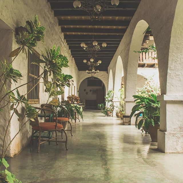 And you thought the veranda was pretty, come down and explore our garden corridors #green  #garden #corridor #copan #hotel #tranquil #explore #experience