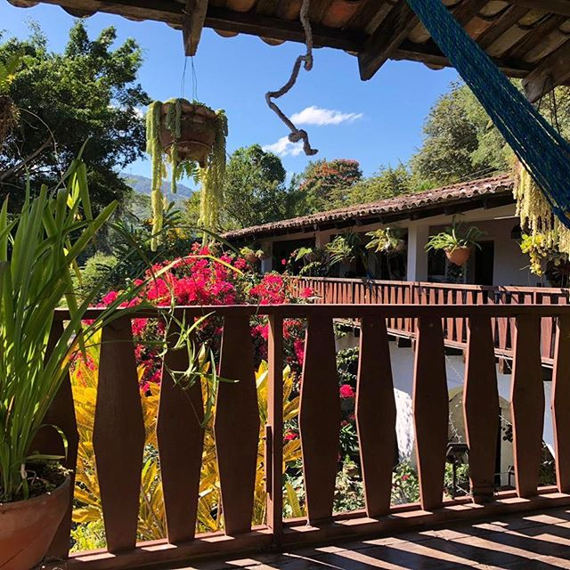 Oh the view! #tranquil #hotel #copan #hostel #corridor #garden #centralamerica #honduras