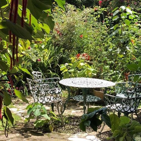 Lush #copan #lush #green #garden #hotel #hostel #honduras