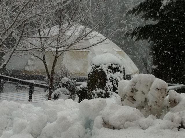 Round Pen in Heavy Snow.jpeg