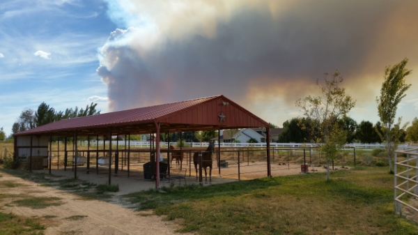 If evacuation is not possible, put all your horses in a fire resistant area, one that has a green vegetative, gravel or dirt buffer around it if possible. Remove any synthetics from the horses that might melt, such as nylon halters, sheets and fly masks.