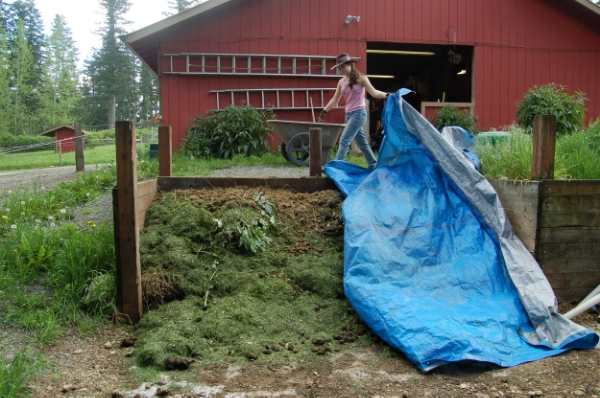 Compost bins can be simple three-sided structures covered with a tarp (which will help keep nutrients from leaching out and keep heat and moisture in the pile) and are ideally located close to barns or paddocks for chore efficiency.