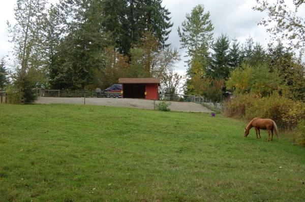 5b - same pasture,  older with hedgerows.JPG