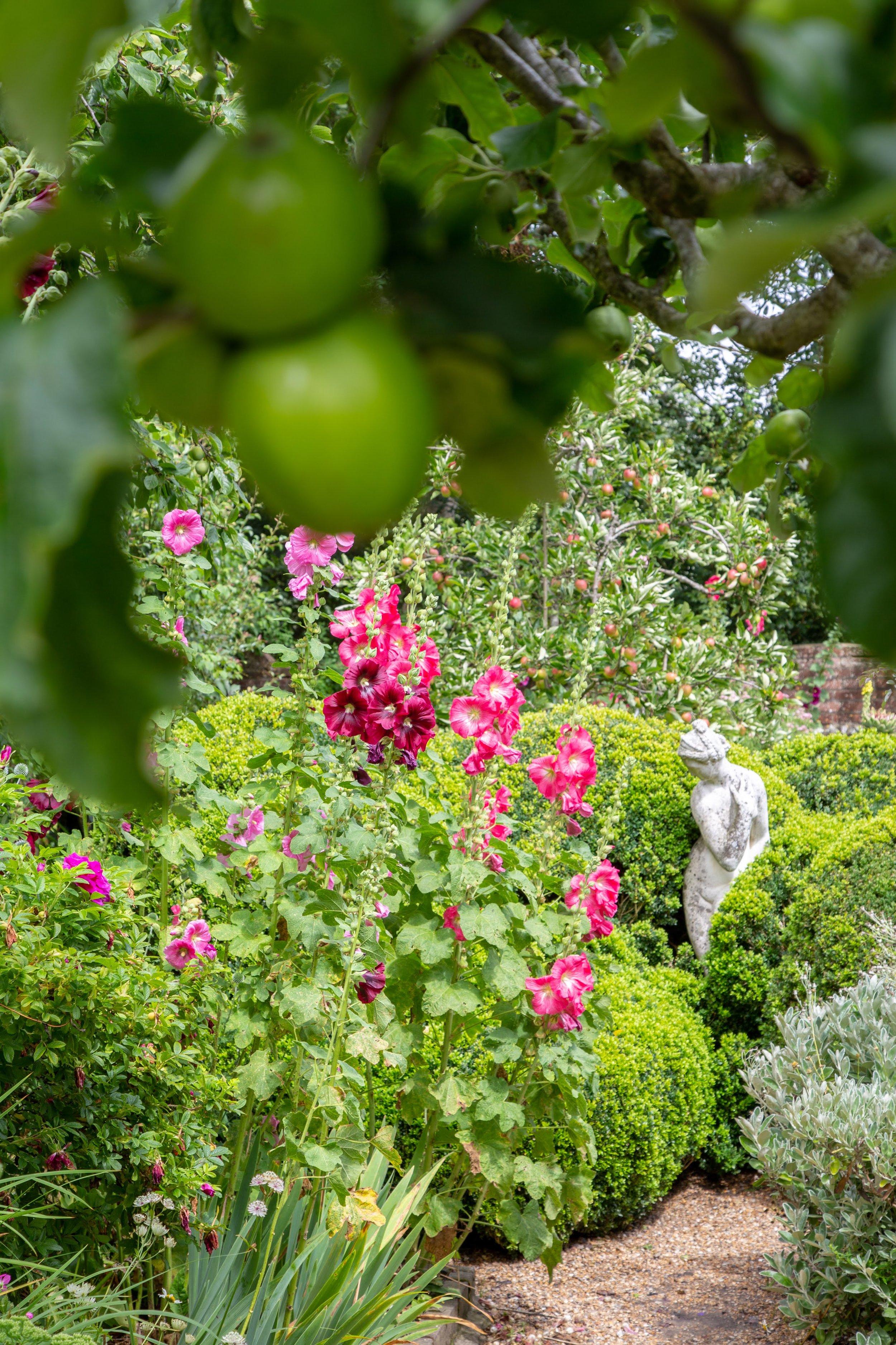 Apples + flower bed Charleston**.jpg