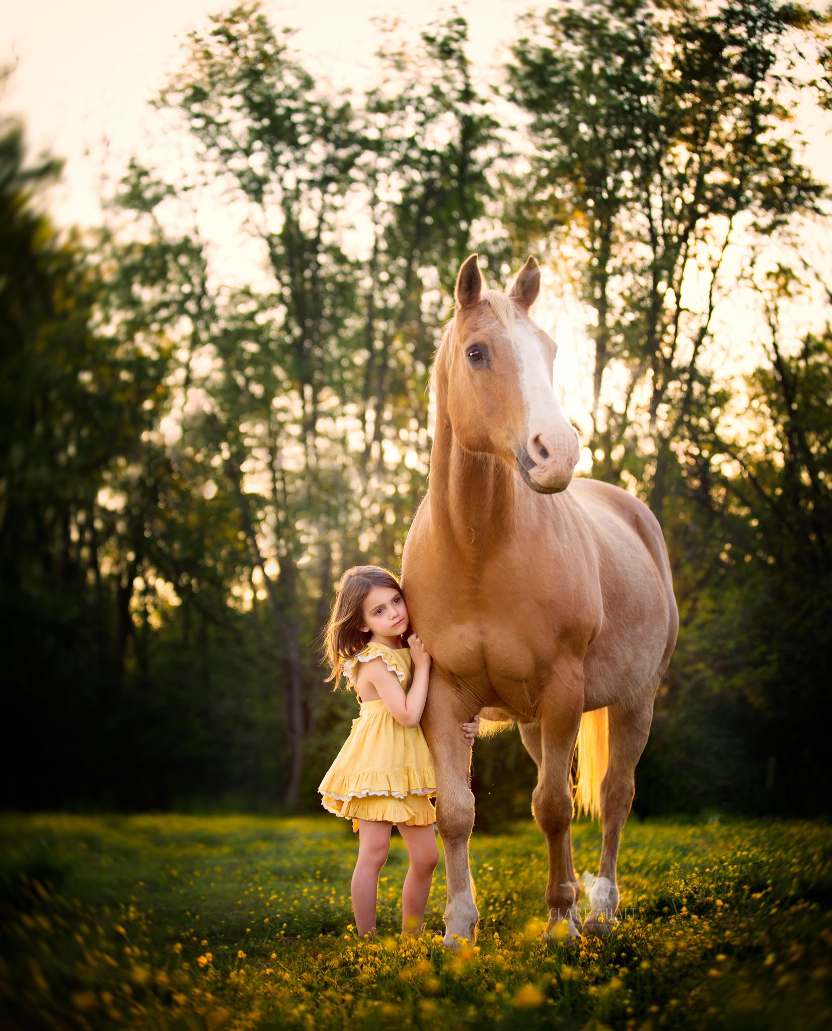 child and equine photographer frederick md