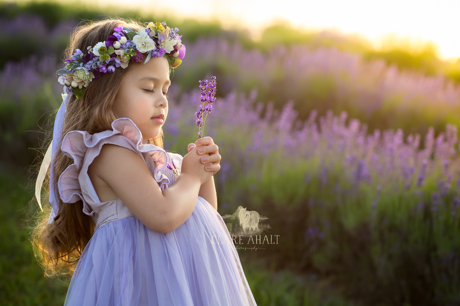 Photographic Portrait of a girl in a purple dress holding lavender in a field in Maryland.  Taken by Professional Portrait Photographer Clare Ahalt Photography, located in Frederick MD, specializing in fine art child portraiture and high school senior portrait photography