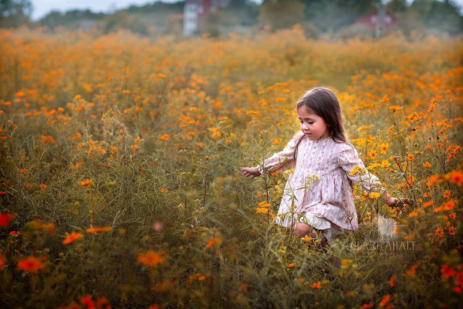 Portrait of a little girl walking through a field of yellow wildflowers.  Photographed by Clare Ahalt Photography, a fine art portrait photographer located in Maryland, serving Maryland, Northern Virginia, Washington DC and Greater Baltimore.  Photographed at a workshop held by Elena Shumilova Photography, photographed on location in Northern Virginia