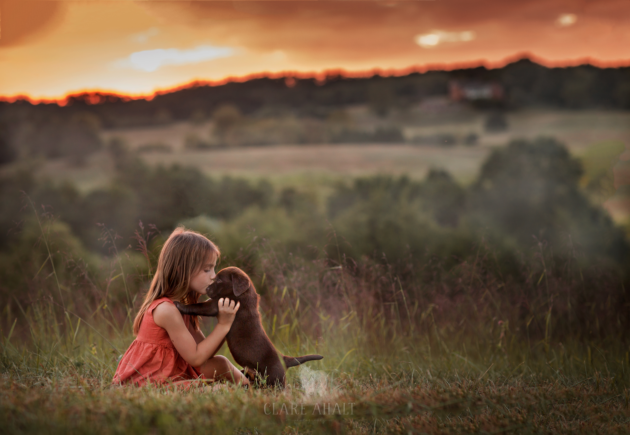 portrait of a little girl holding a chocolate lab puppy during sunset.  Photographed by Clare Ahalt Photography, a fine art portrait photographer located in Frederick, MD, serving Maryland, Northern Virginia and Washington DC.  Taken during a workshop held by Elena Shumilova on location in Northern Virginia
