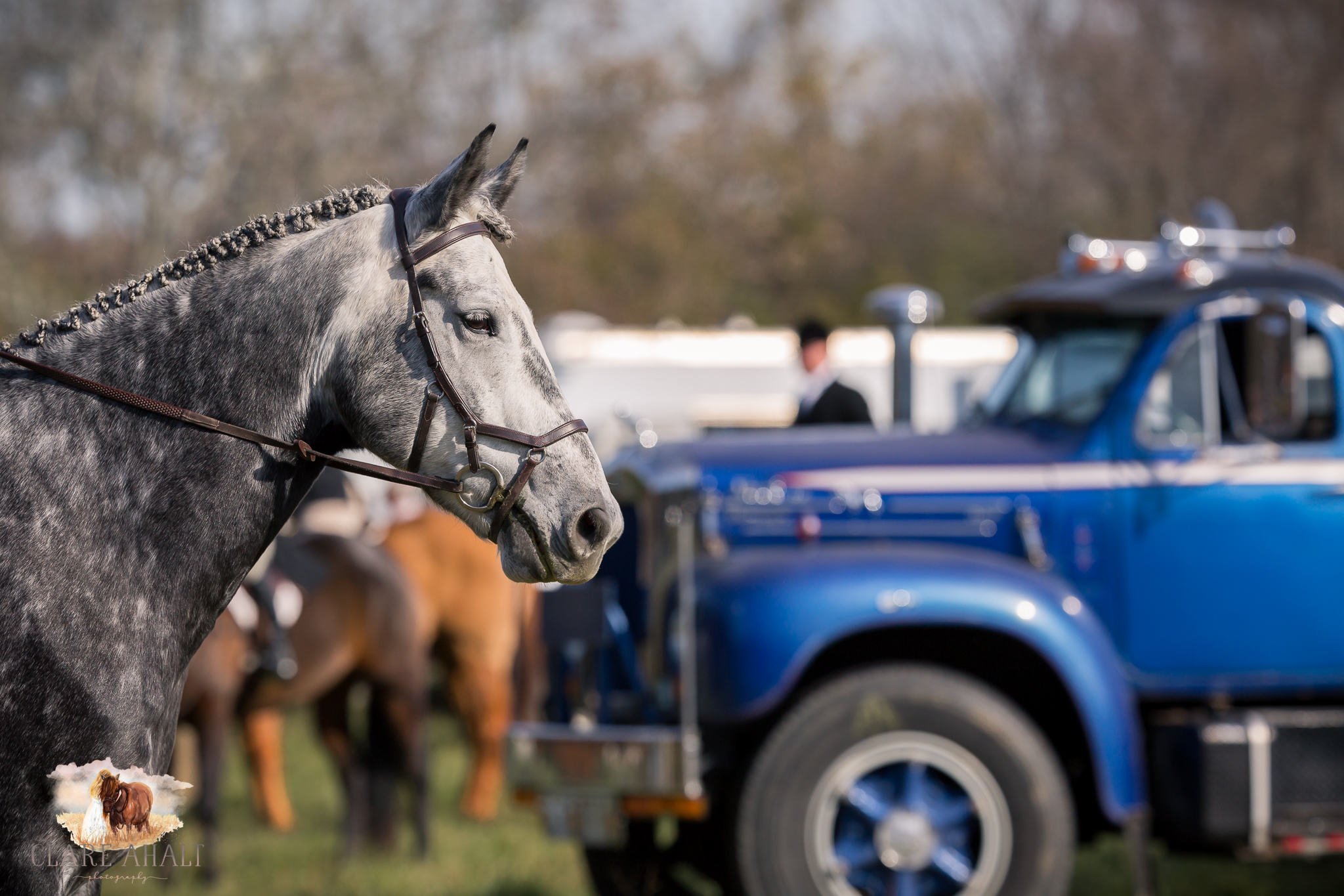 Best_Equestrian_Photographer_Maryland_equine_photographer_northern_virginia_equestrian_Photographer-15.jpg