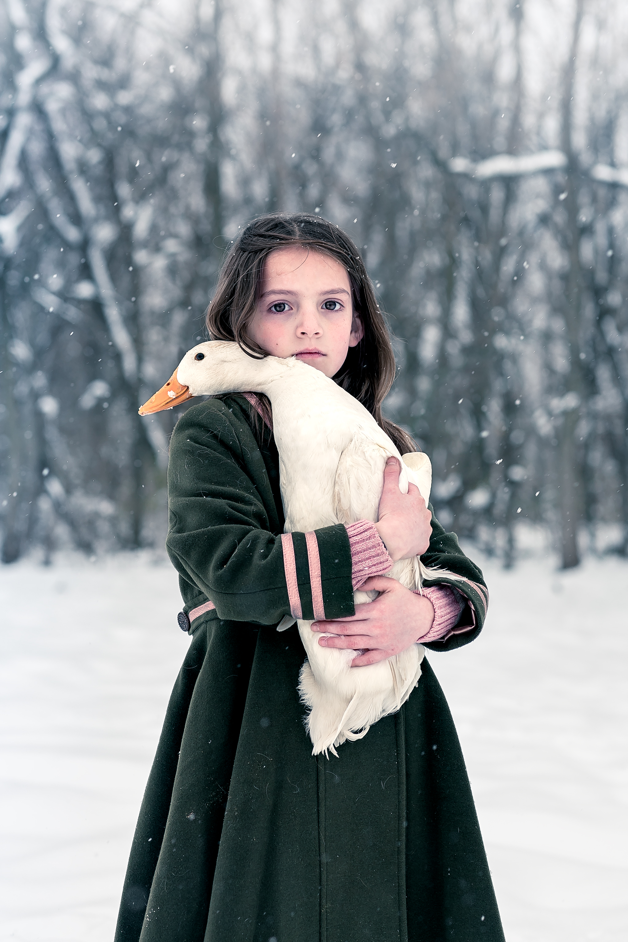 Portrait of a little girl holding a white duck in the snow with a green coat.  Photographed in Potomac, MD by international award winning fine art portrait photographer Clare Ahalt Photographer, located in Mid-Maryland.  Accepting limited commissions.