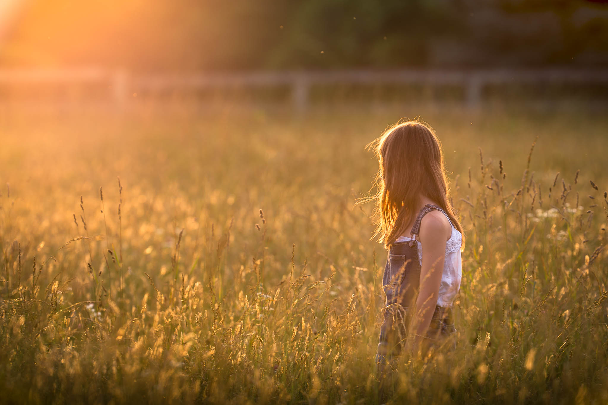 photograph portrait of little girl in long grass in a field watching the sunset