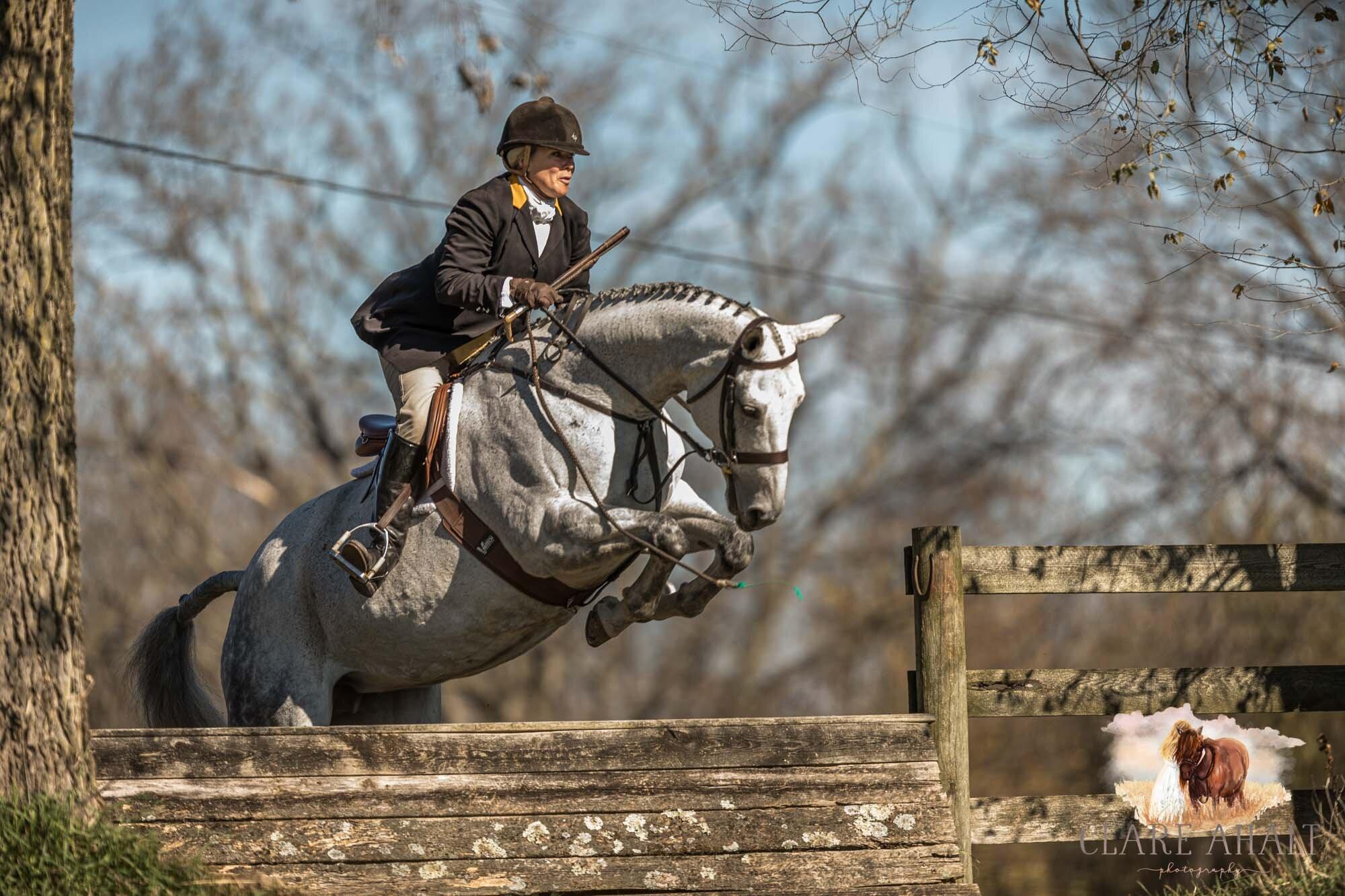 equine_photographer_potomac_md_equine_photographer_middleburg_VA_equine_portraiture_loudon_county_VA-1110.jpg