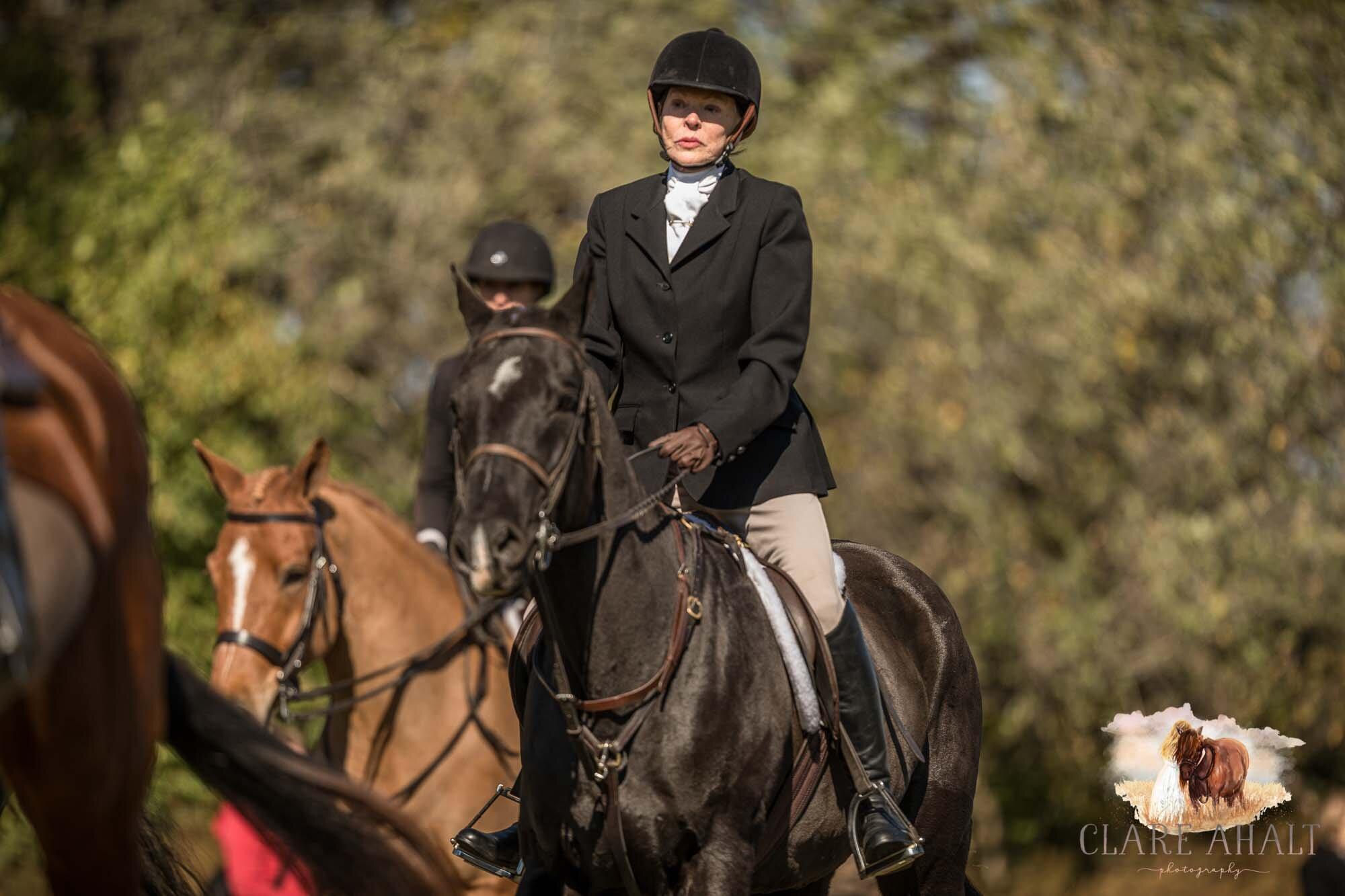 equine_photographer_potomac_md_equine_photographer_middleburg_VA_equine_portraiture_loudon_county_VA-1136.jpg