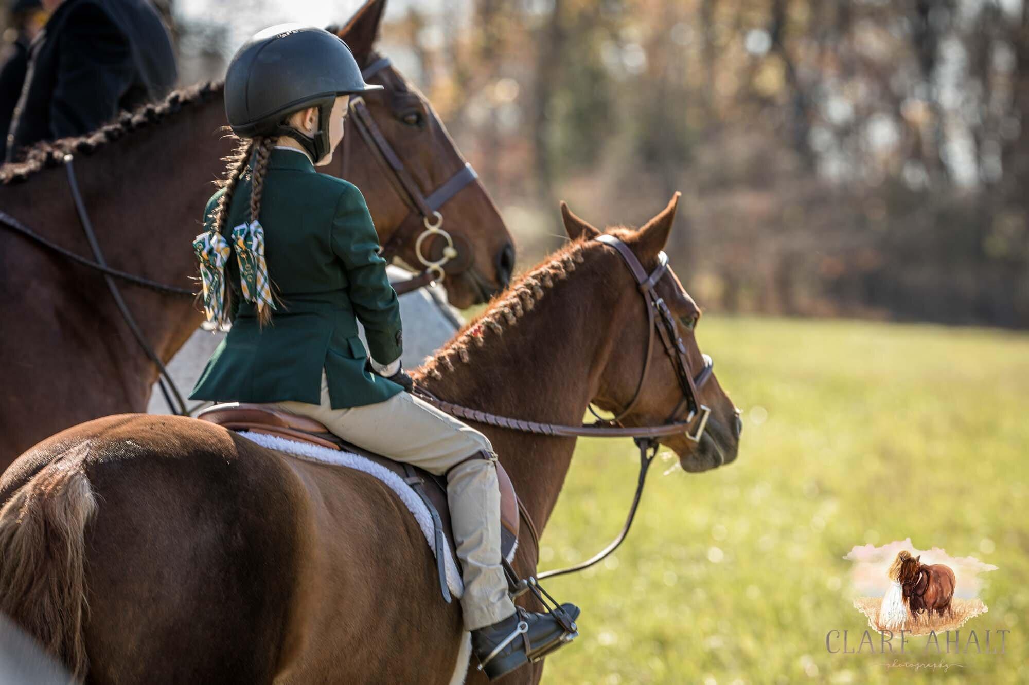equine_photographer_potomac_md_equine_photographer_middleburg_VA_equine_portraiture_loudon_county_VA-1199.jpg