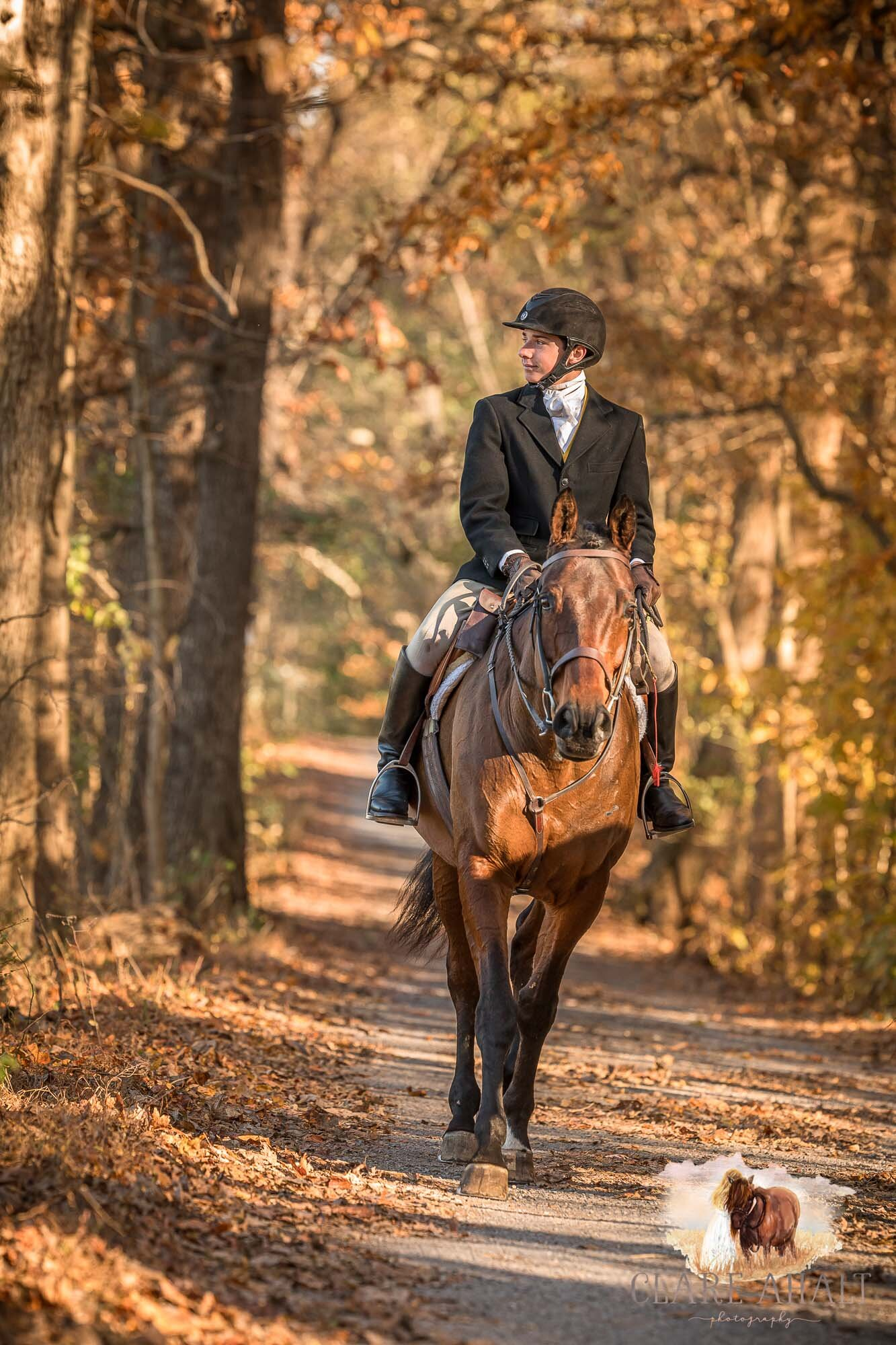 equine_photographer_potomac_md_equine_photographer_middleburg_VA_equine_portraiture_loudon_county_VA-1275.jpg