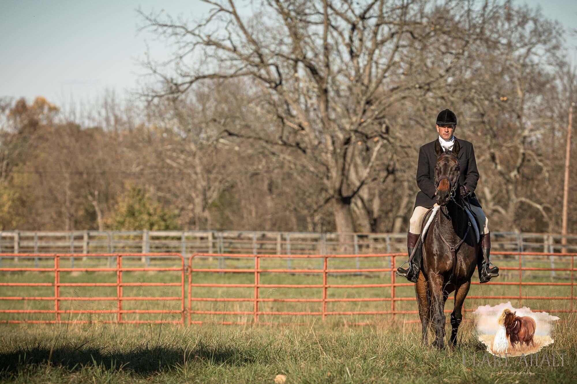 equine_photographer_potomac_md_equine_photographer_middleburg_VA_equine_portraiture_loudon_county_VA-1300.jpg