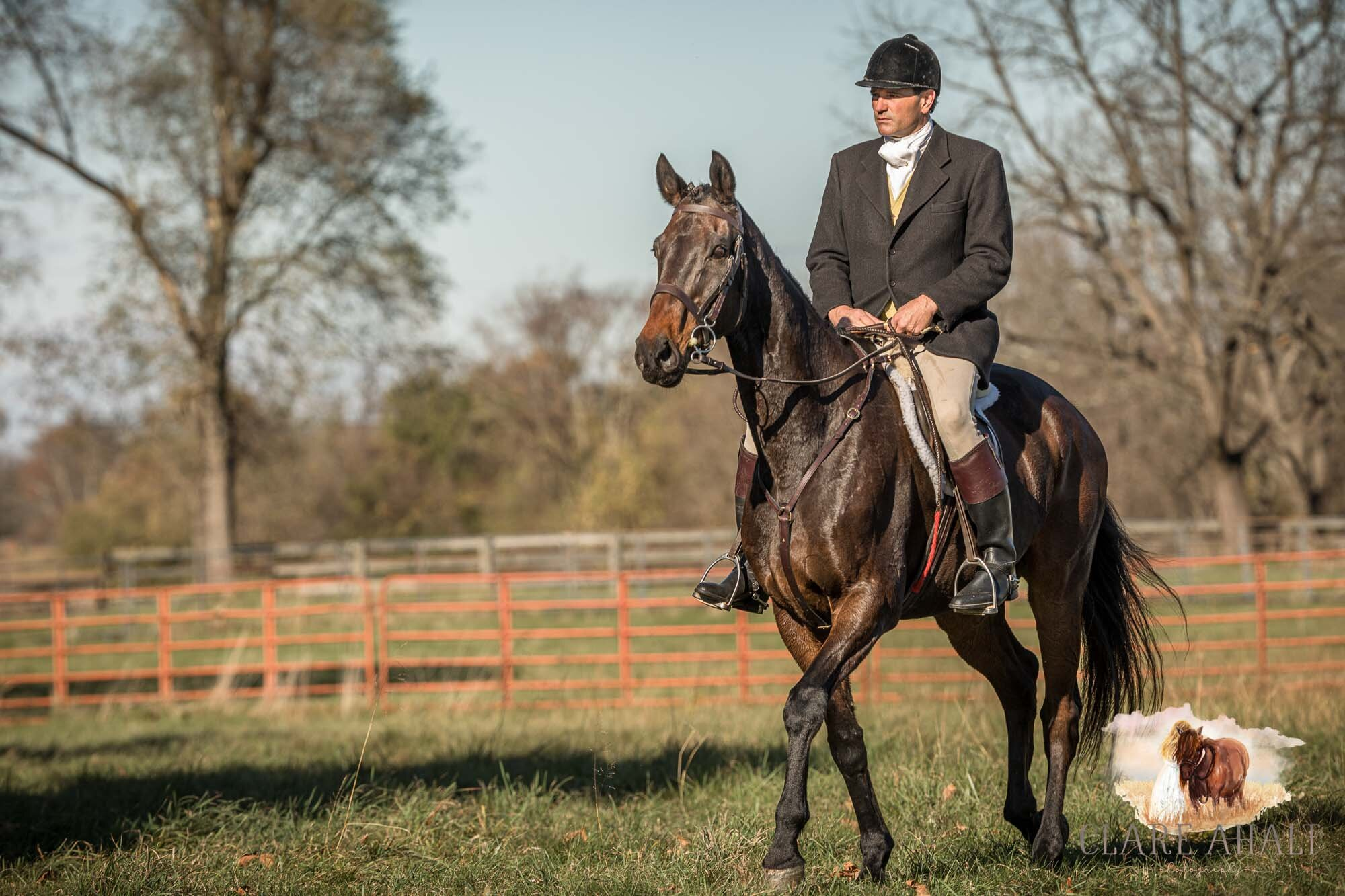 equine_photographer_potomac_md_equine_photographer_middleburg_VA_equine_portraiture_loudon_county_VA-1302.jpg