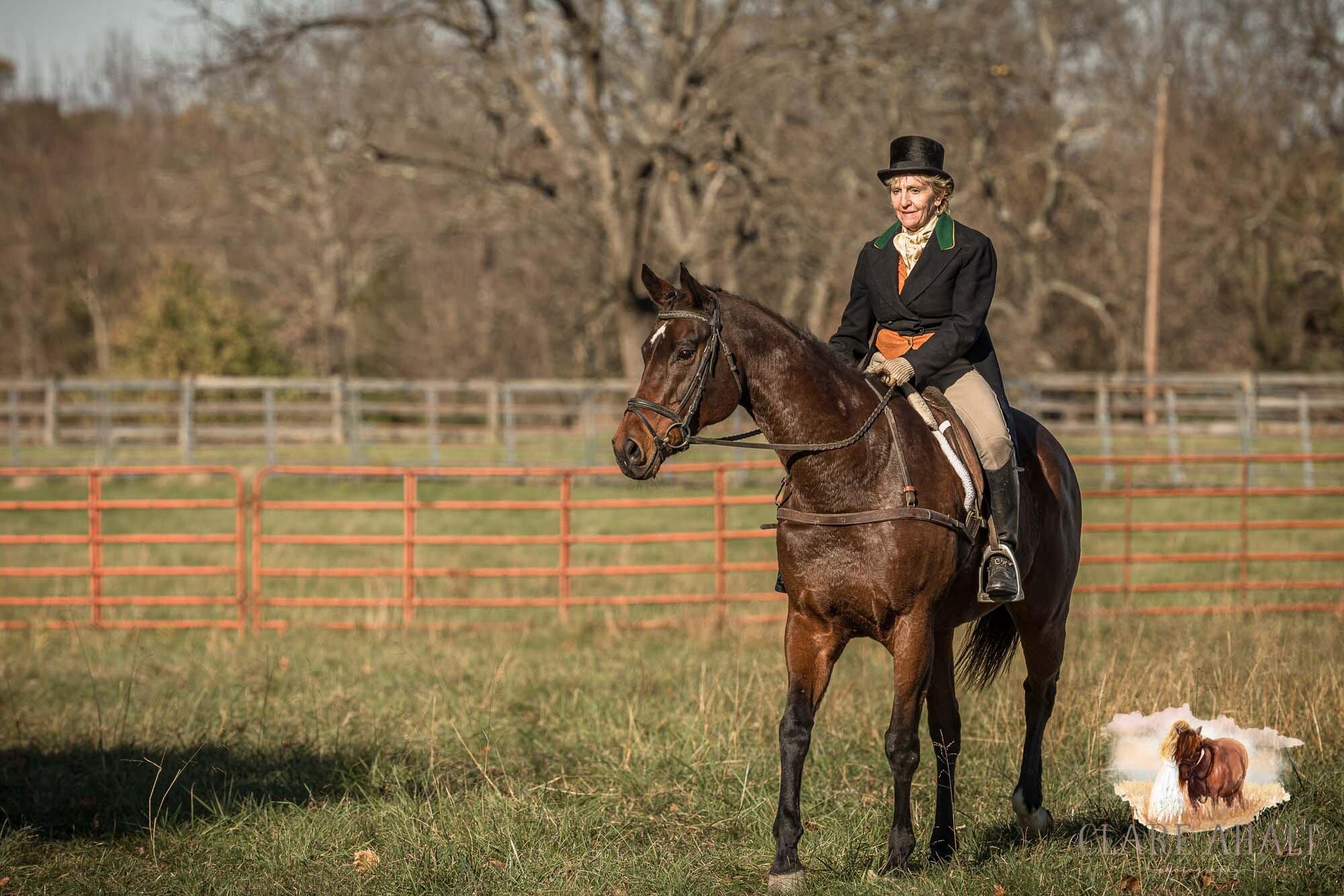 equine_photographer_potomac_md_equine_photographer_middleburg_VA_equine_portraiture_loudon_county_VA-1345.jpg