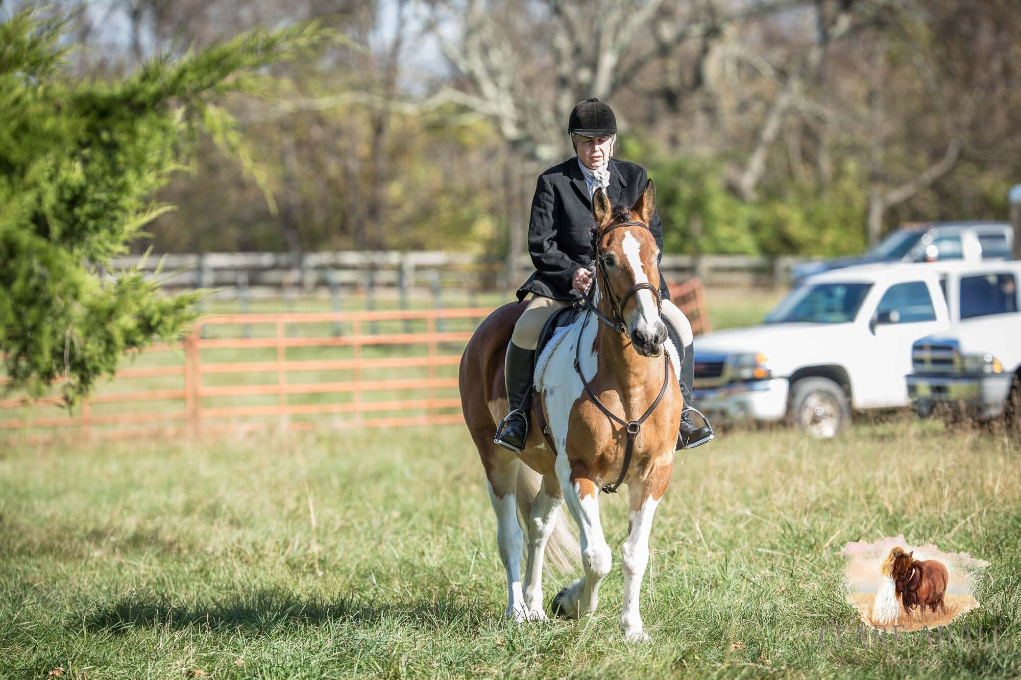 equine_photographer_potomac_md_equine_photographer_middleburg_VA_equine_portraiture_loudon_county_VA-2809.jpg