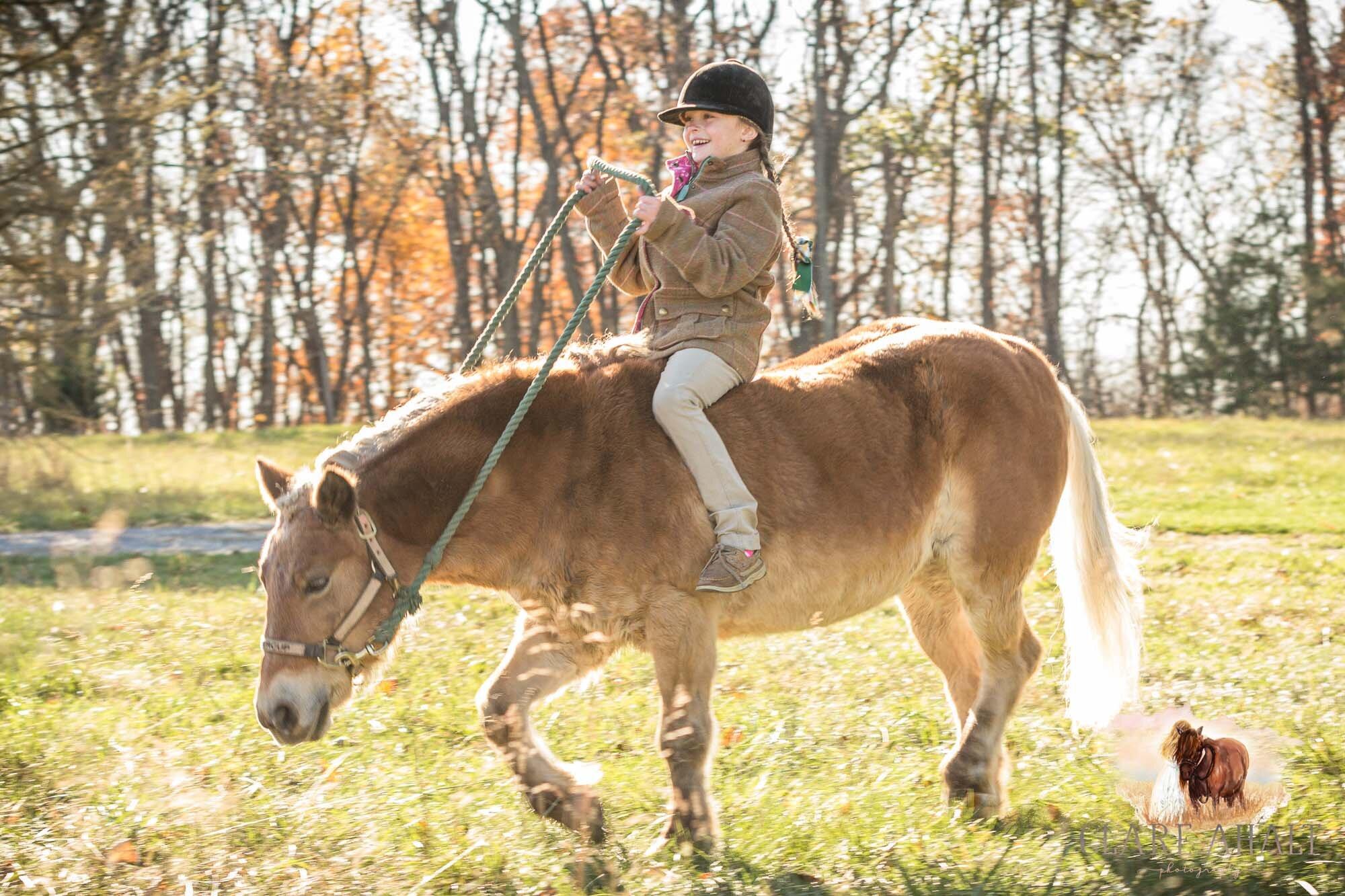 equine_photographer_potomac_md_equine_photographer_middleburg_VA_equine_portraiture_loudon_county_VA-9968.jpg