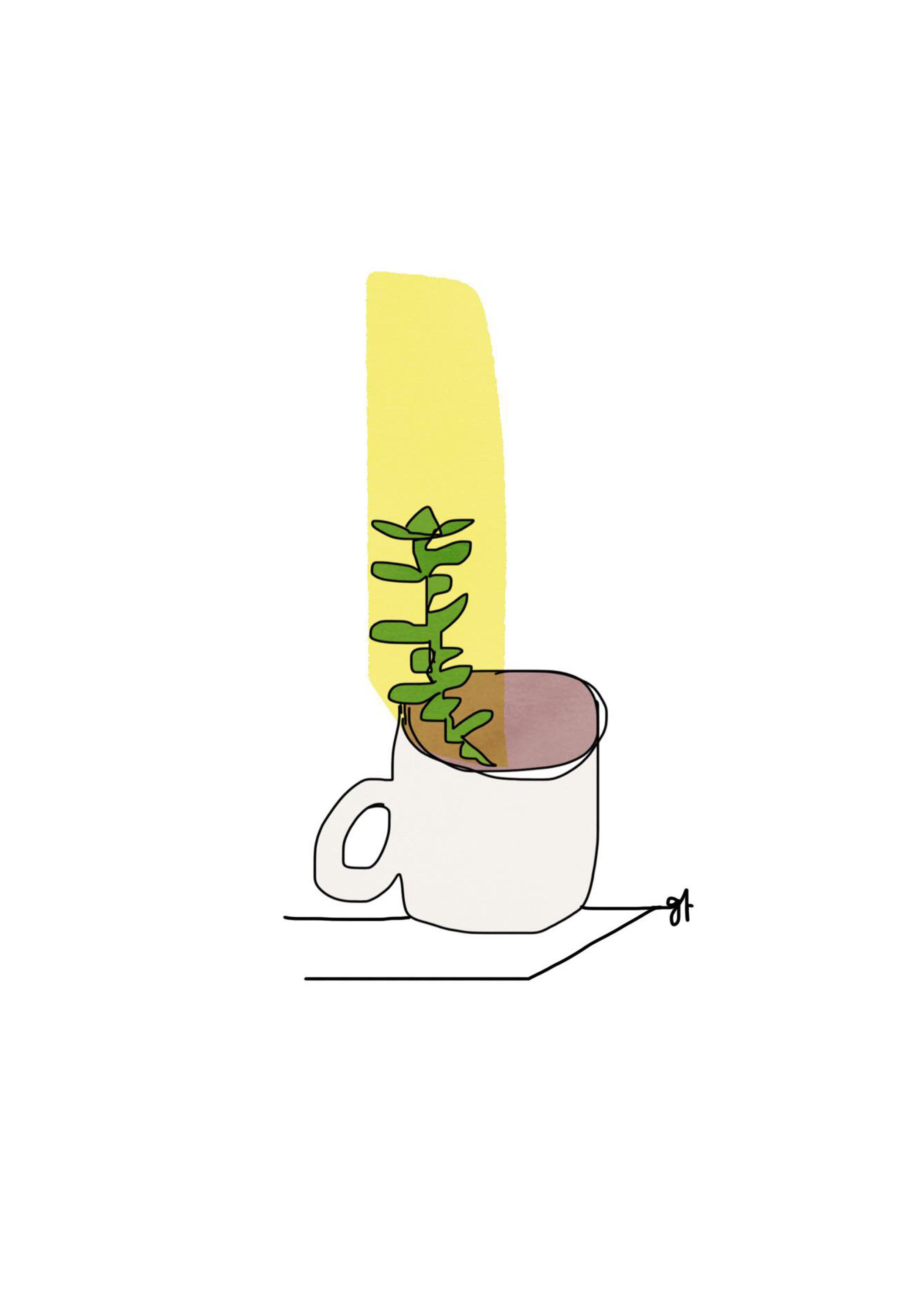Cup bud