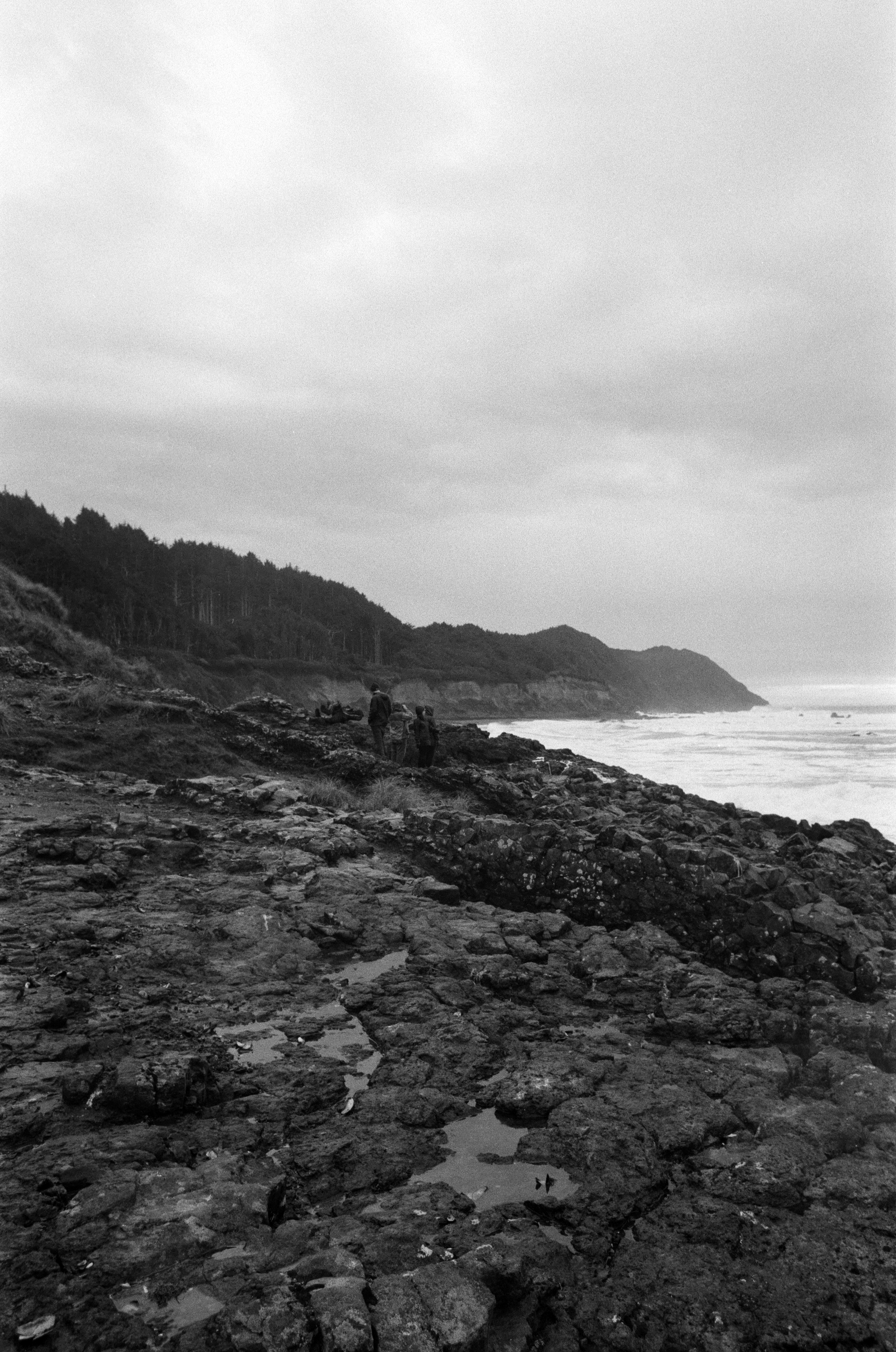 Ilford_Roll01_PNW_2019_004.jpg