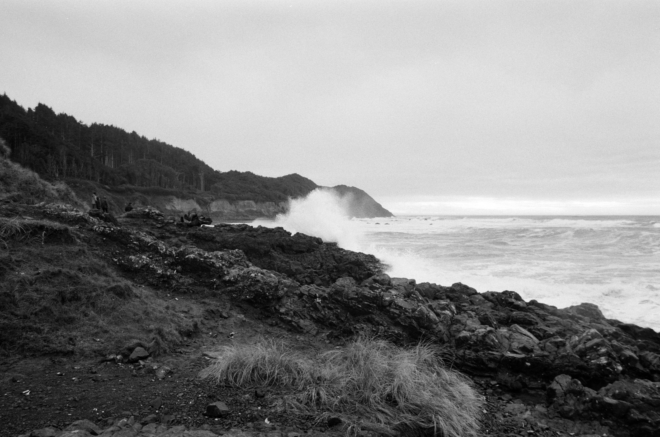 Ilford_Roll01_PNW_2019_008.jpg