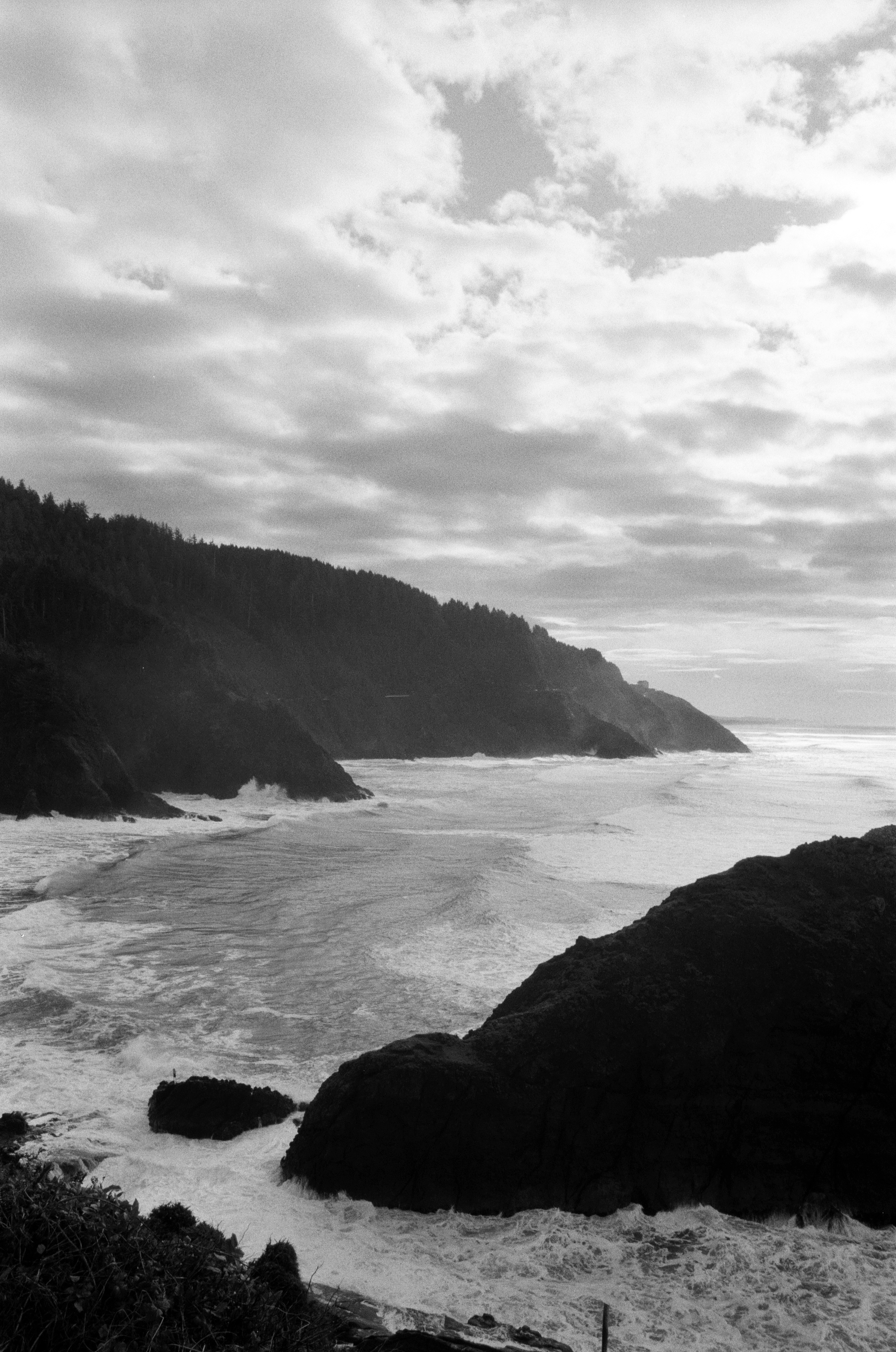 Ilford_Roll01_PNW_2019_013.jpg