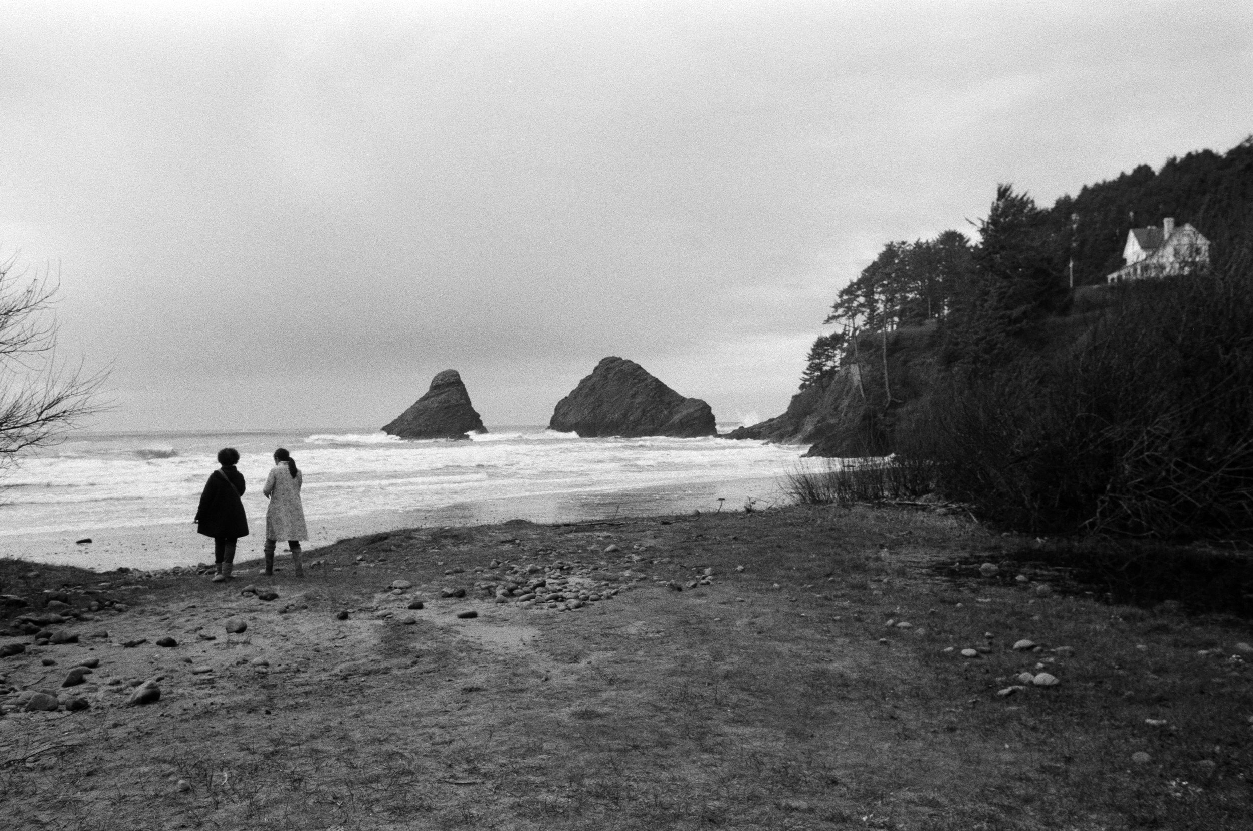 Ilford_Roll01_PNW_2019_018.jpg
