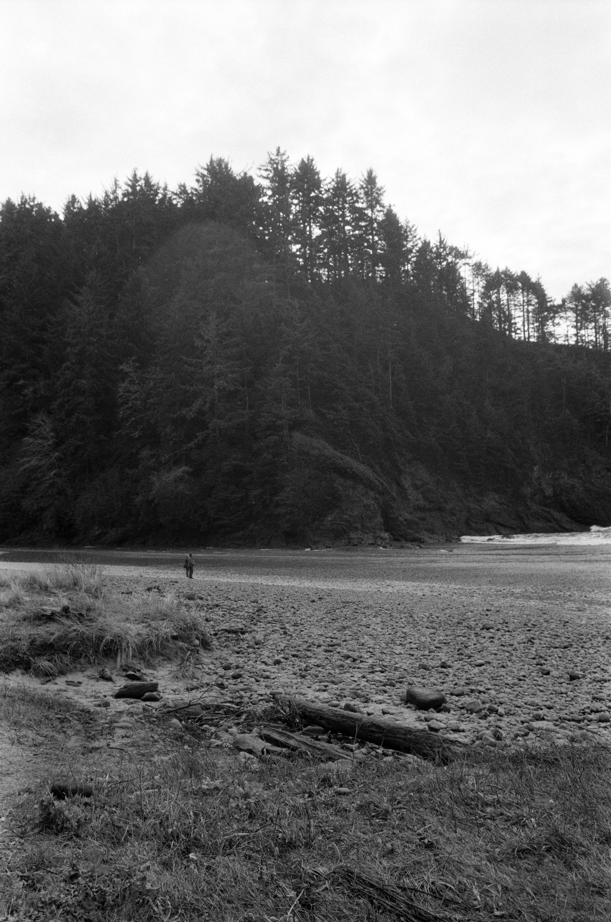 Ilford_Roll01_PNW_2019_020.jpg