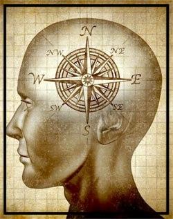 brain with compass.jpg