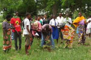 Students and parents planting trees (River Litchi  Lecaniodiscus fraxinifolius )