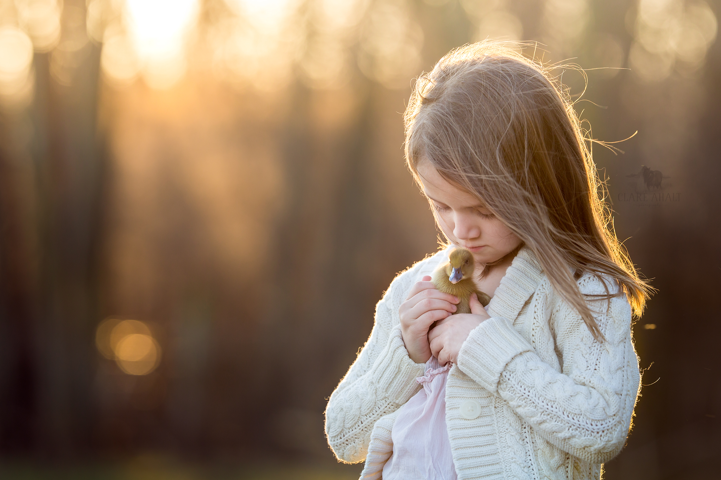 Veterinarian Dr. Ahalt's daughter with her duckling on their farm in Frederick MD