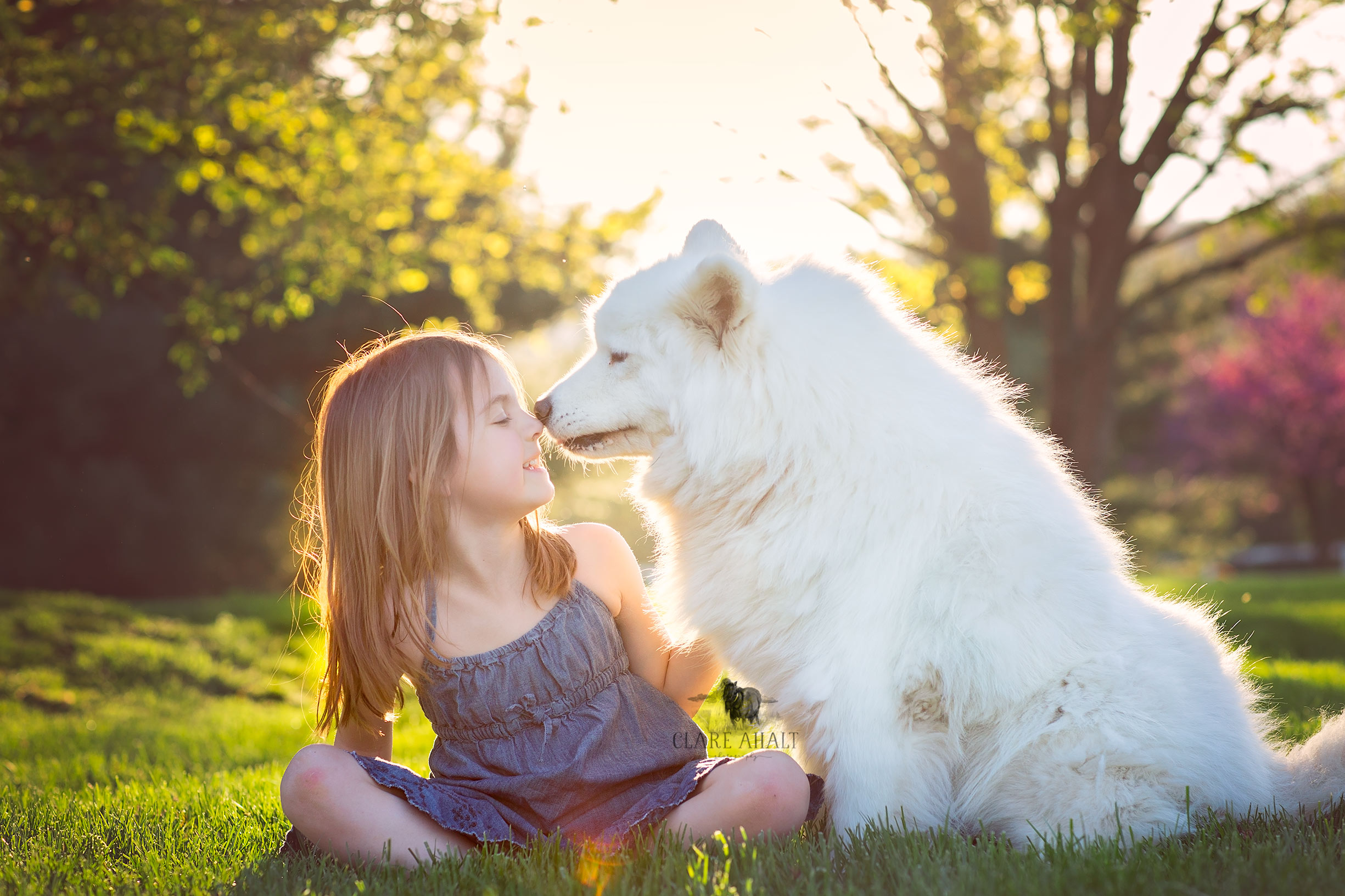Veterinarian Dr. Ahalt's daughter with their dog on their farm in Frederick MD