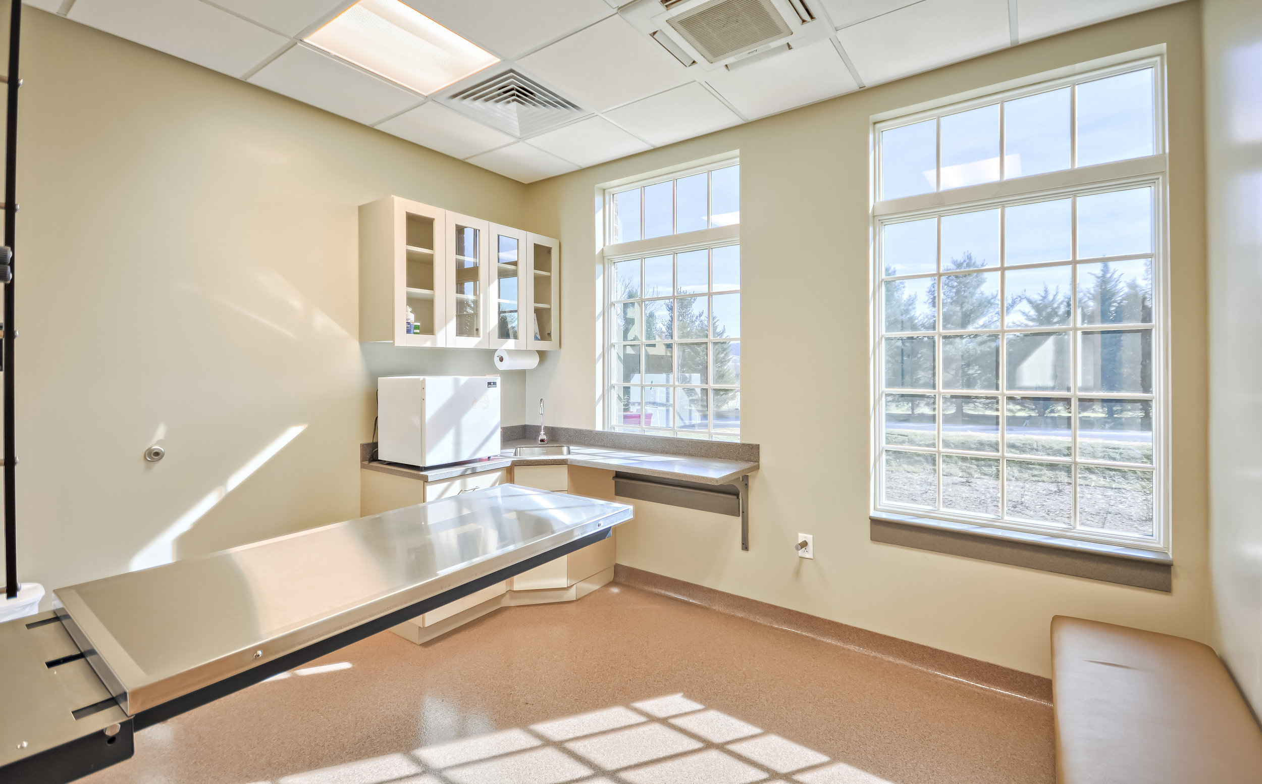 veterinarian frederick md examination room for large dogs