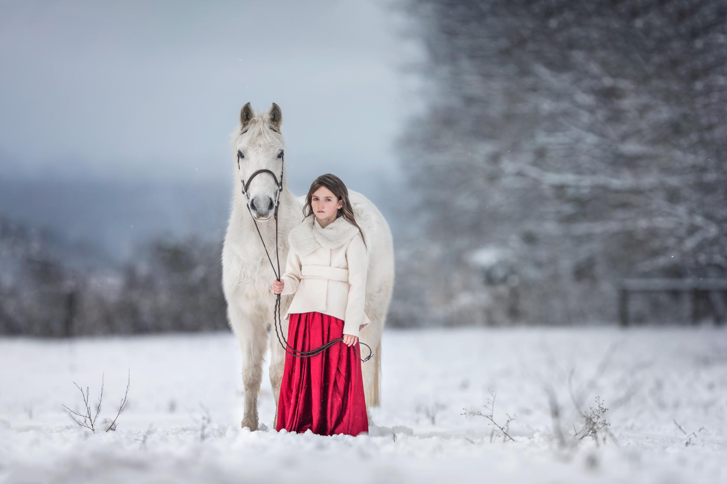 equine_photographer_middleburg_va_best_equine_photographer_poolesville_MD.jpg
