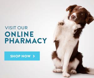 online pharmacy veterinary hospital Knoxville md