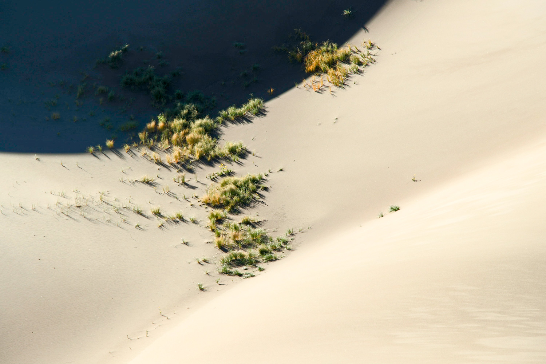 dunes-0818.jpg