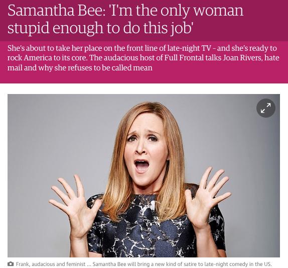 Lorraine Berry ambersands creative amber sands Guardian TV blog interview Full Frontal Samantha Bee