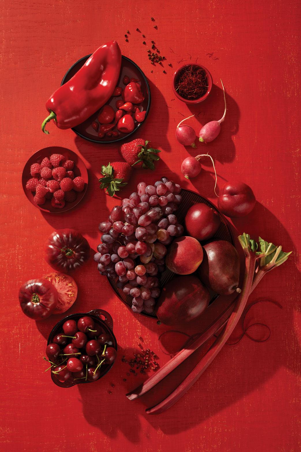 Tyllie_Barbosa_Color_Series_Red.jpg