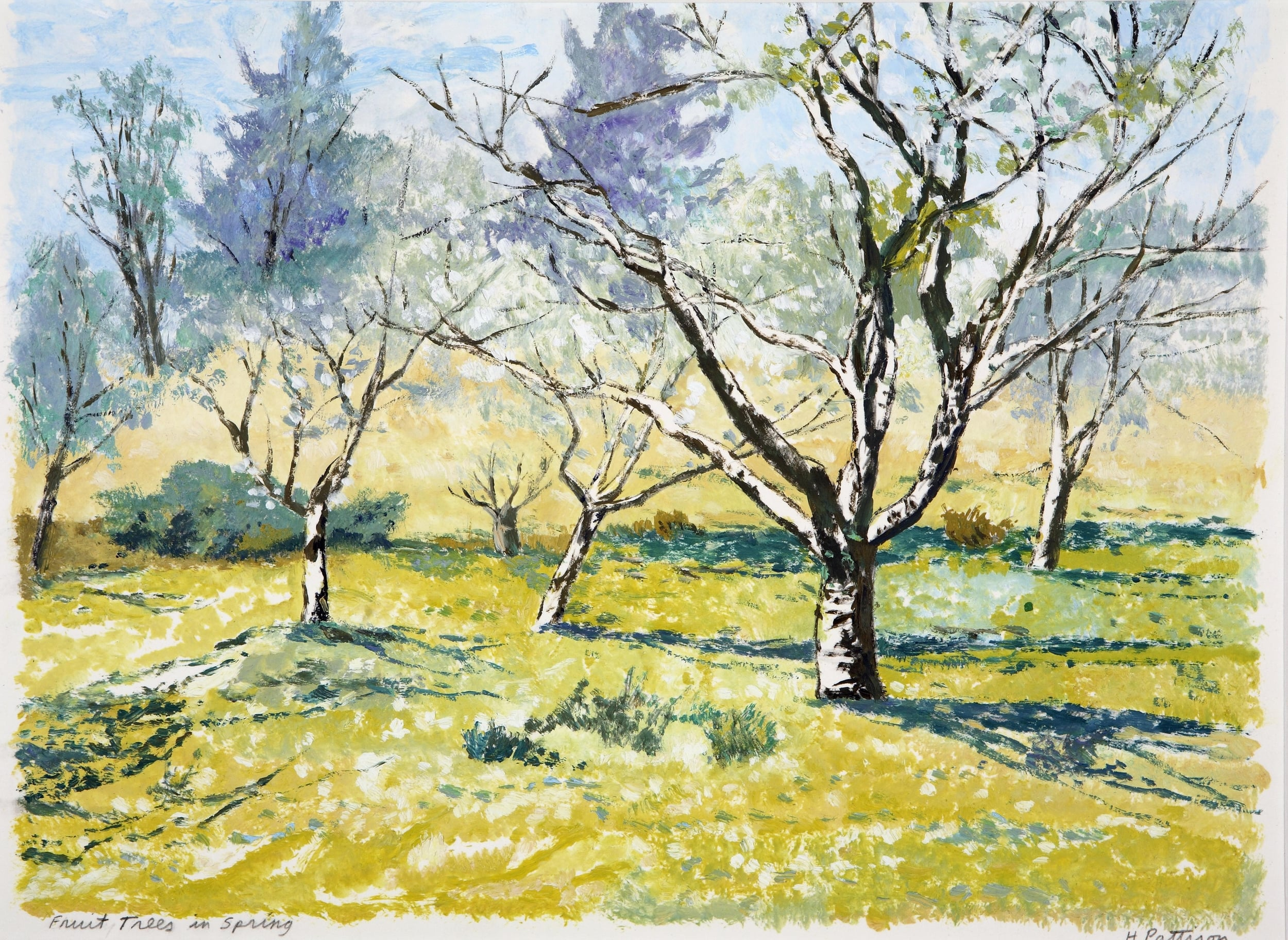Apple Orchard in Spring, oil on paper, 11 x 14.5 inches