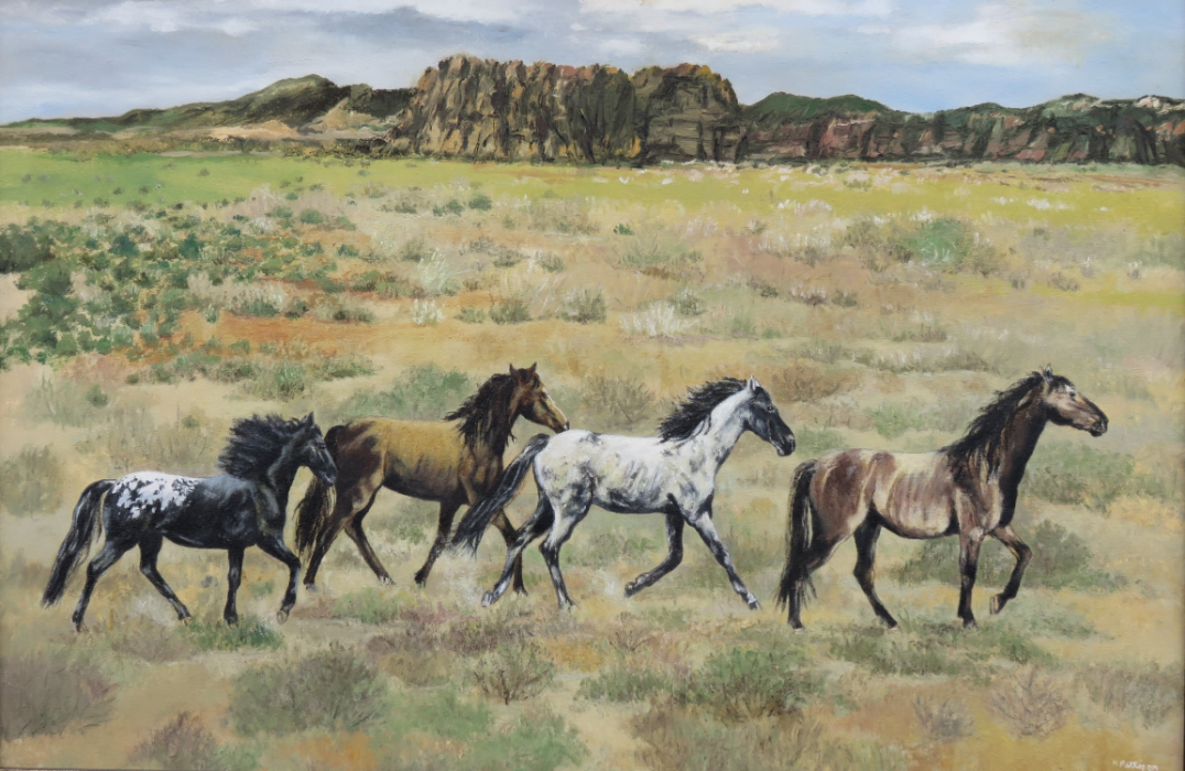 Wild Horses in Eastern Colorado, oil on canvas, 24 x 36 inches