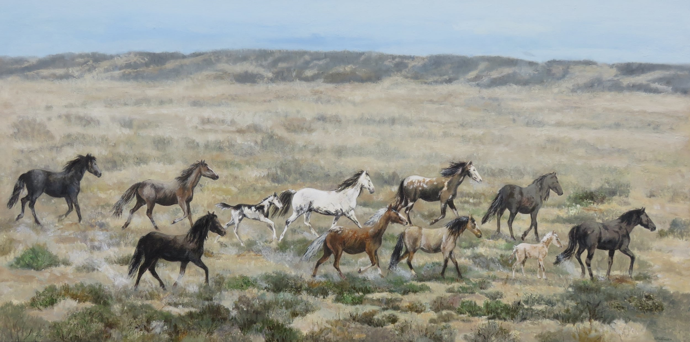 Wild Horses in the Desert, oil on canvas, 24 x 48 inches