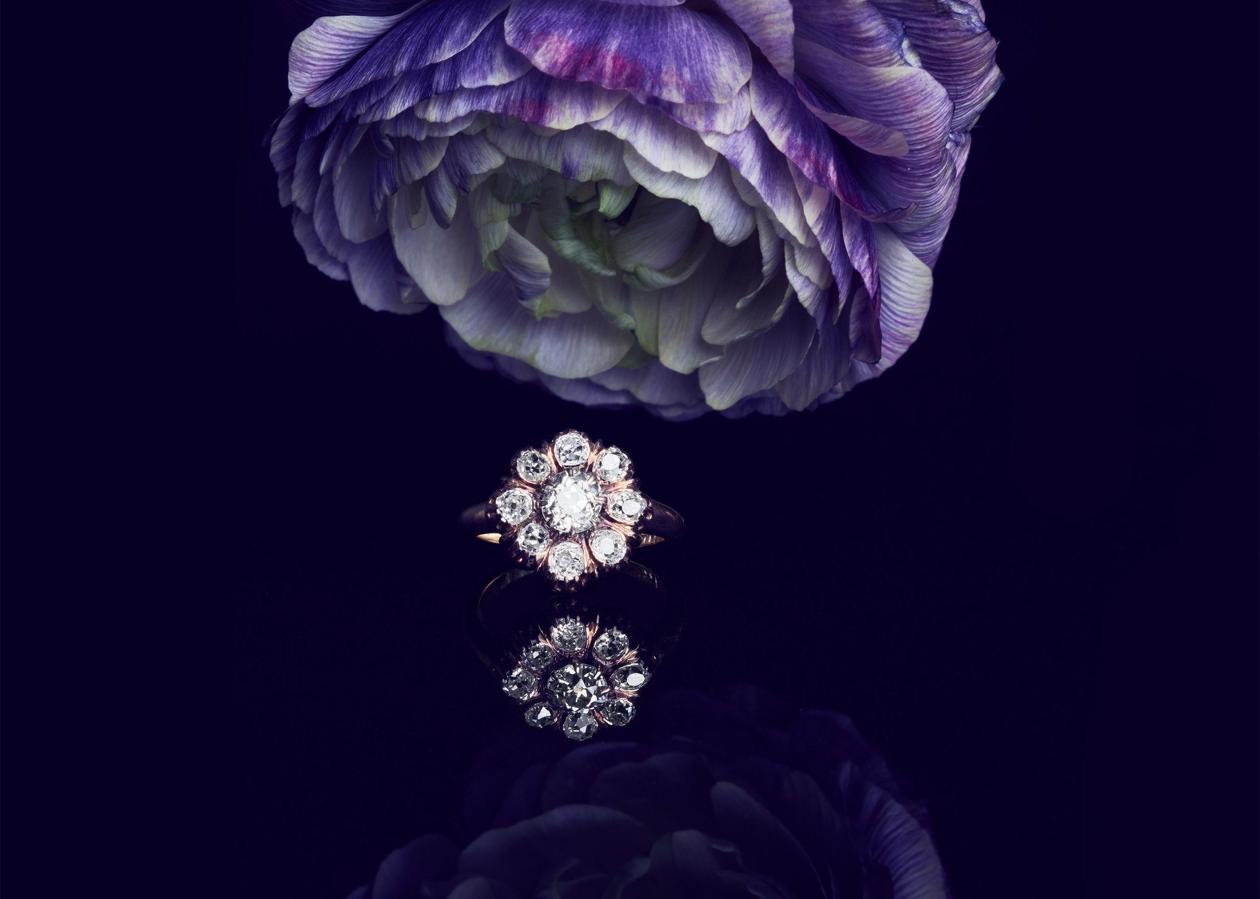 Flowers_008.jpg