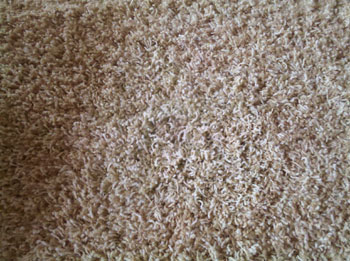 After:  ACS carpet repair with bonded insert