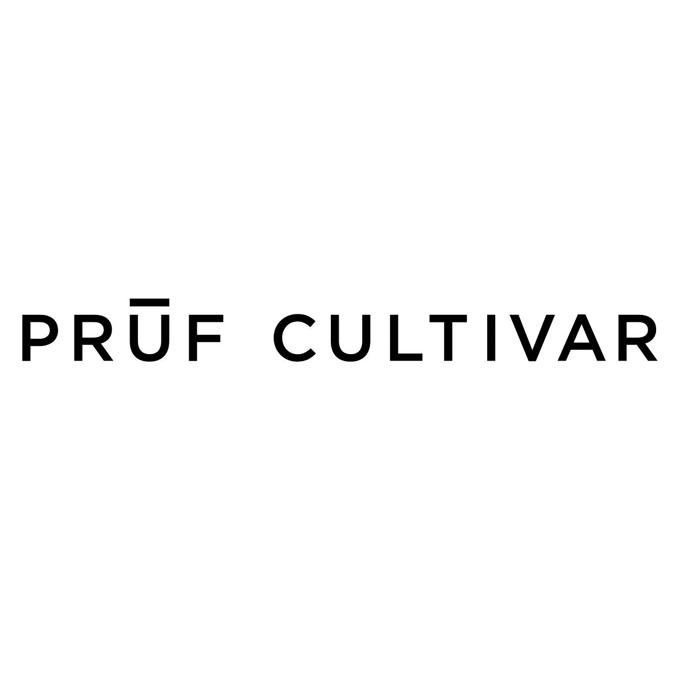 Pruf.png