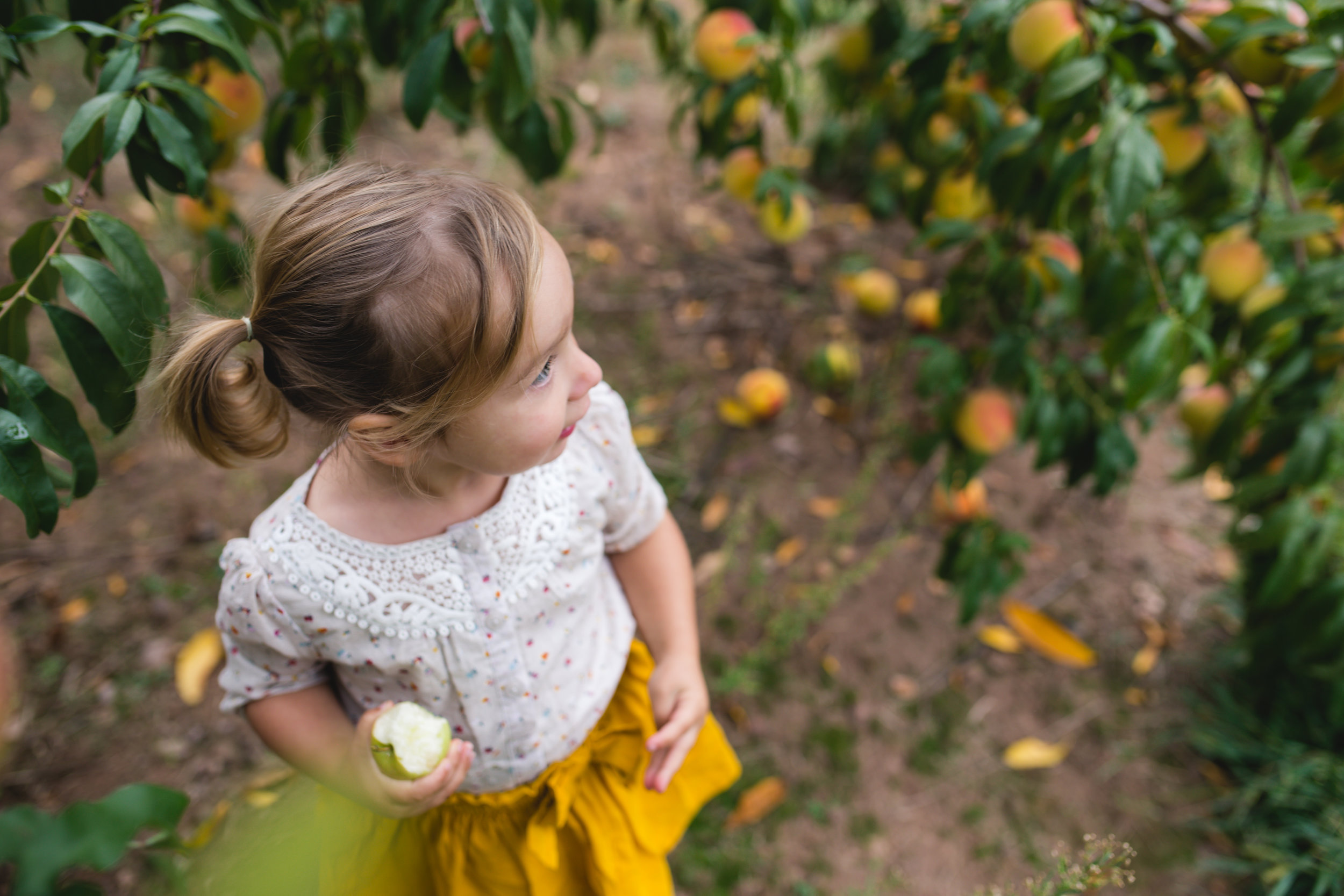 Lehigh Valley Family and Child Photographer