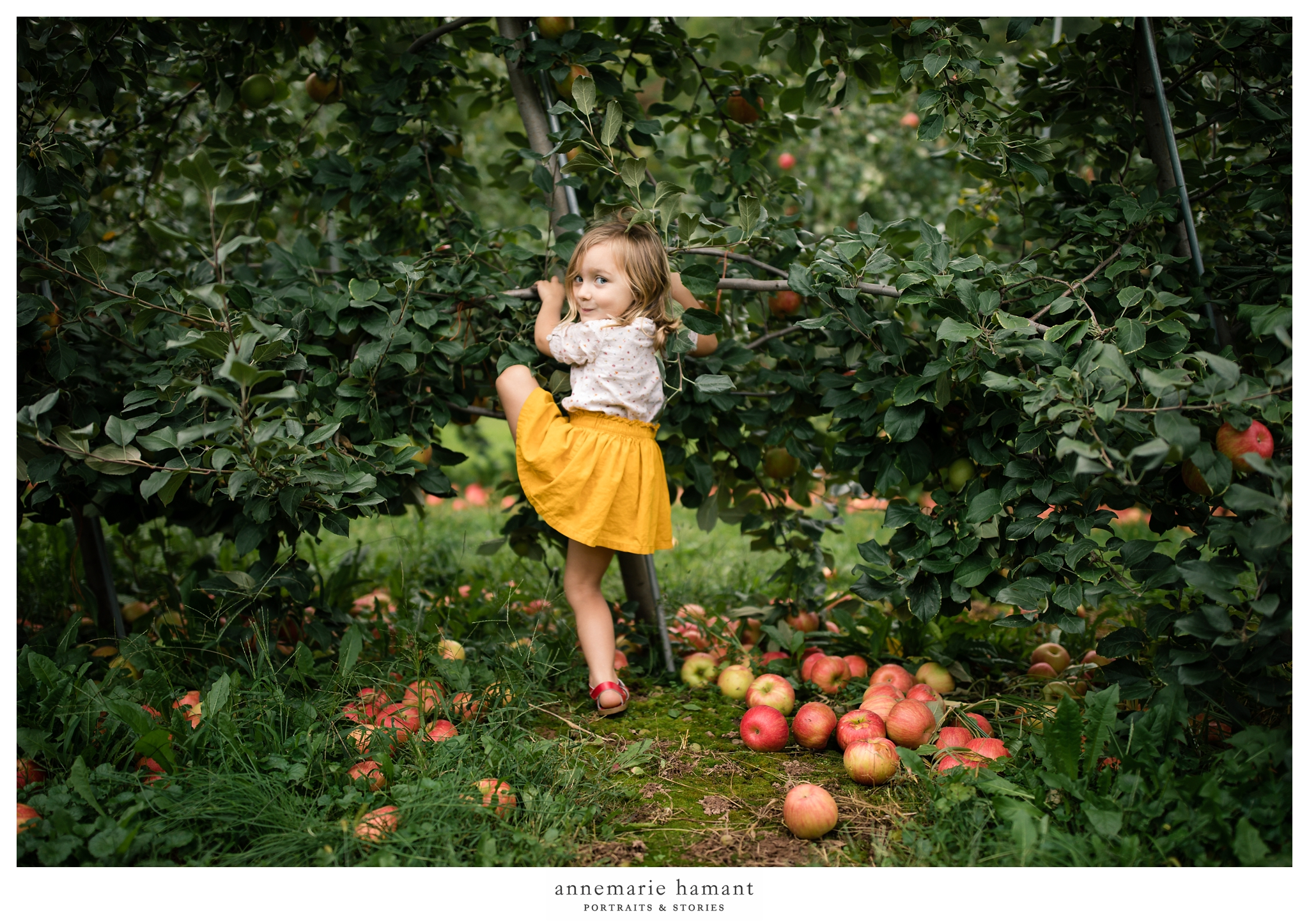 Lehigh Valley Fall Pictures Family Photographer