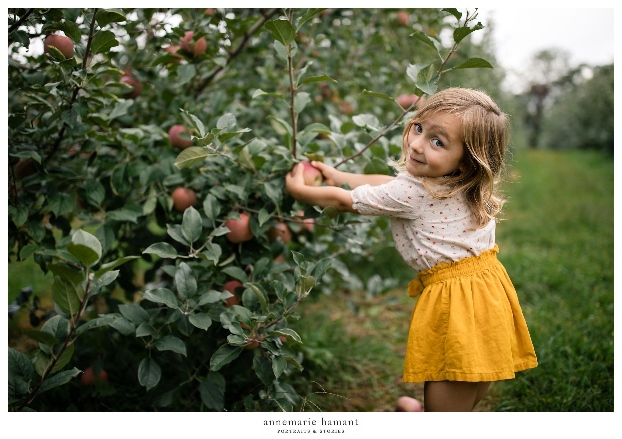 AnneMarieHamantPhotography_www.annemariehamant.com-LehighValleyPA-_1721.jpg
