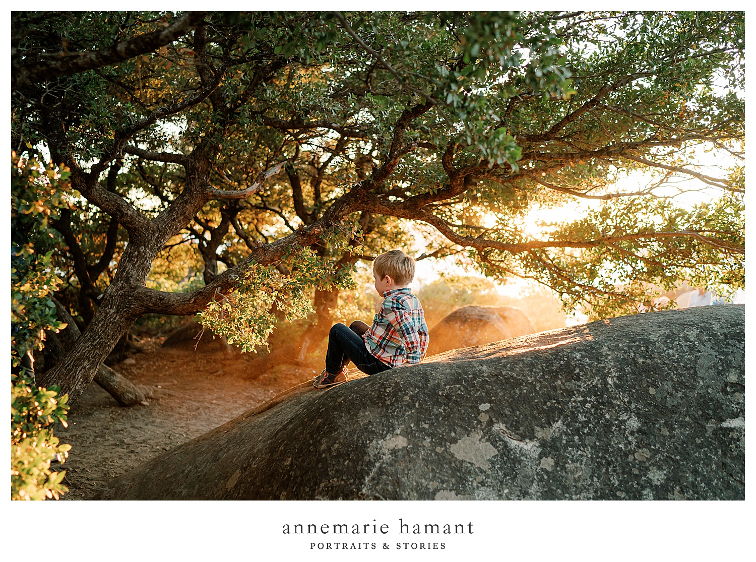 AnneMarie Hamant uses dramatic lighting to create  family photography that her clients treasure forever.